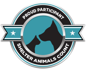 Shelter Animals Count | The National Database