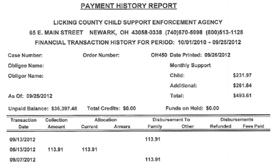 Licking County - Payment History